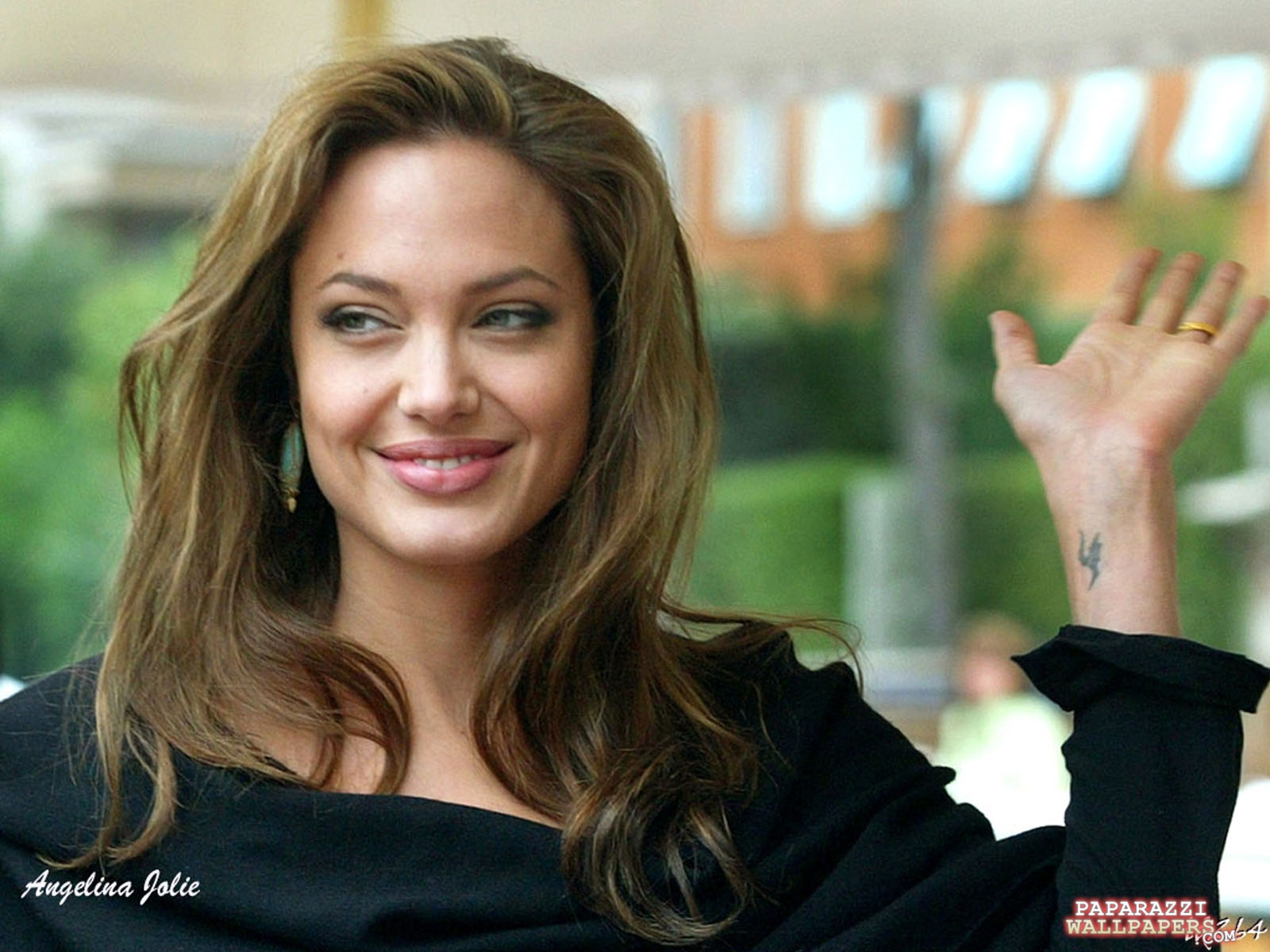 angelina jolie wallpapers 011
