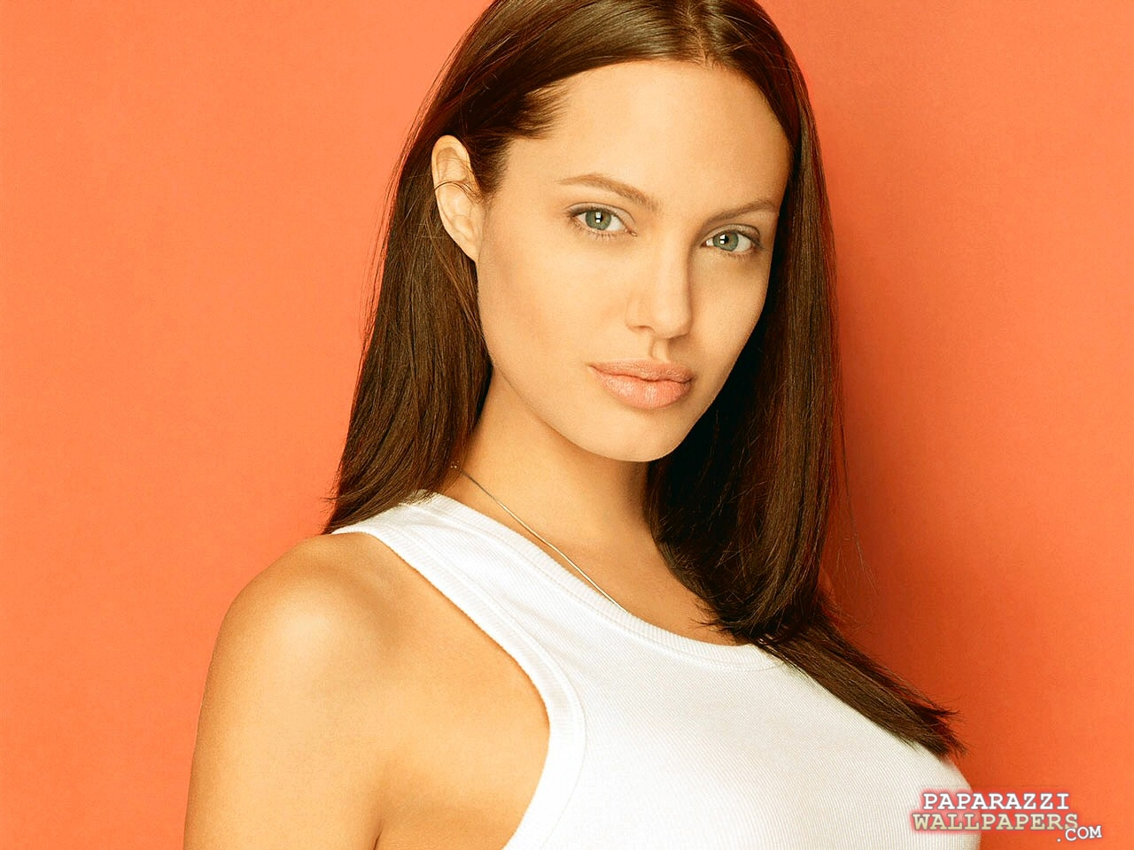 angelina jolie wallpapers 017