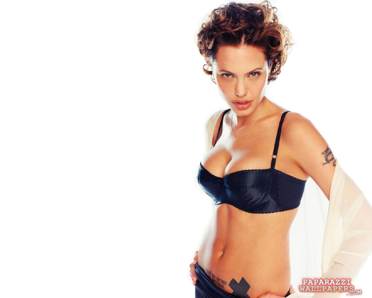 angelina jolie wallpapers 056