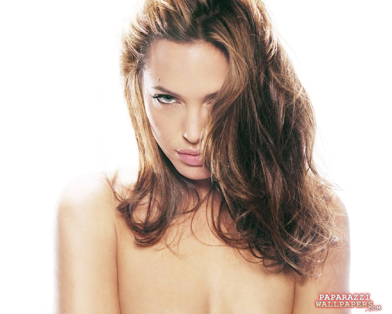 angelina jolie wallpapers 065