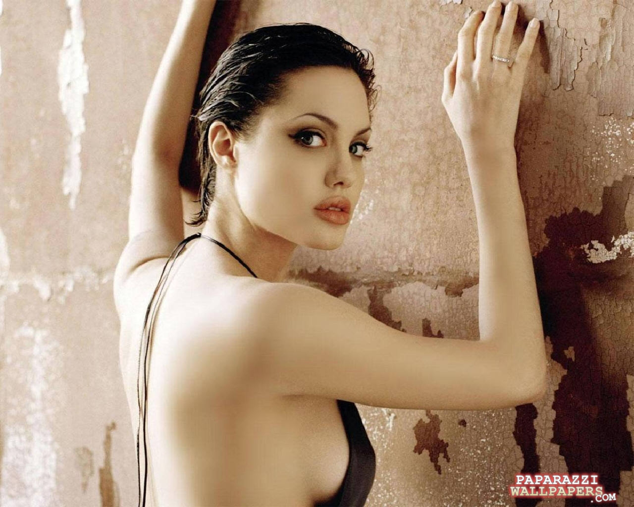 angelina jolie wallpapers 085