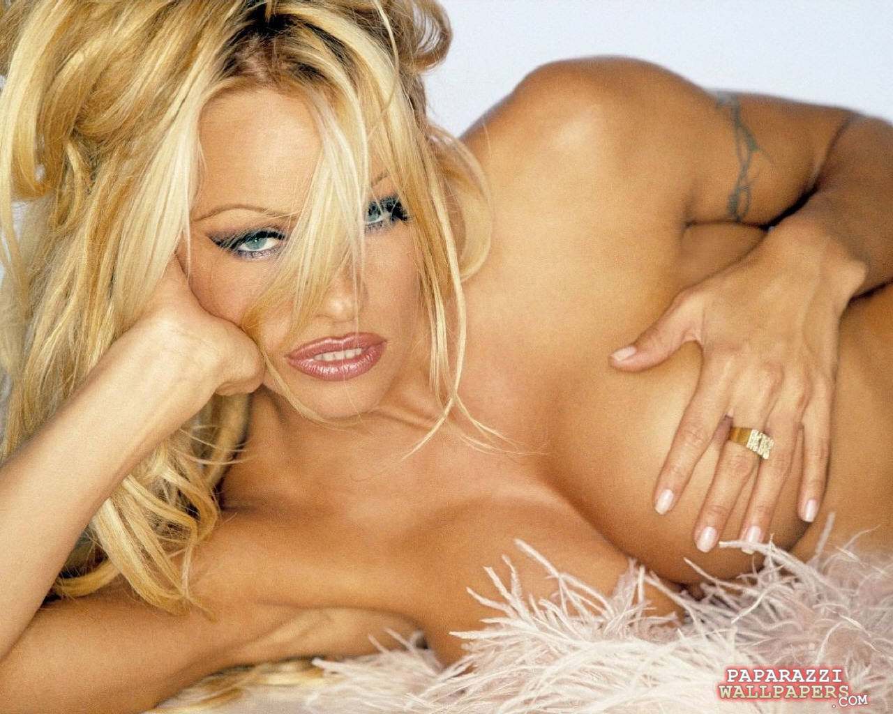 pamela anderson wallpapers 067
