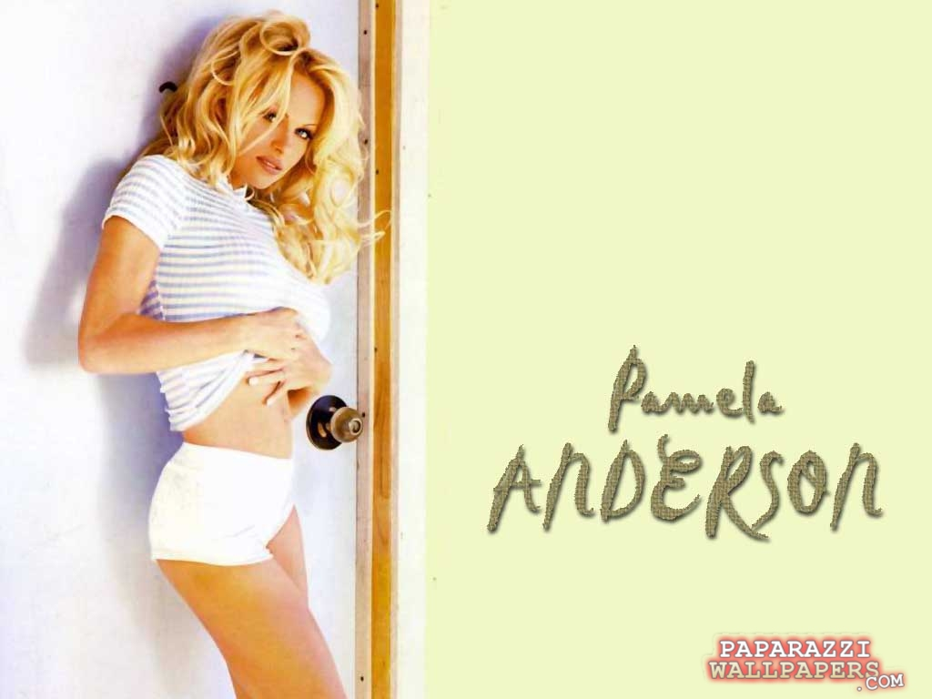 pamela anderson wallpapers 132