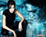 angelina jolie wallpapers 018 wallpaper
