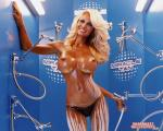 pamela anderson wallpapers 087 wallpaper