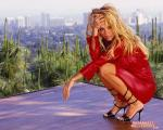 pamela anderson wallpapers 119 wallpaper