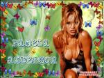 pamela anderson wallpapers 141 wallpaper